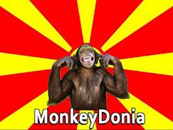 monkeydonia