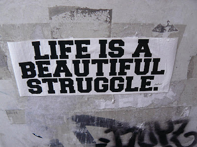 Life is a beautiful Struggle.