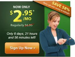 iPage Affordable Web Hosting only $2.95/moth, Limited Time Promotion