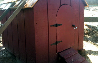 Converting A Dog House For Ducks Easy Diy Project