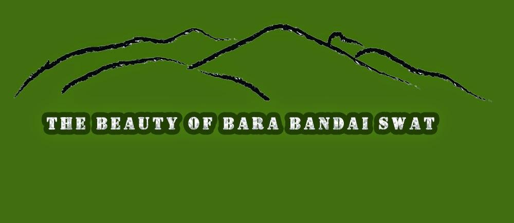 Bara Bandai
