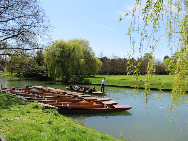 University of Cambridge college punting