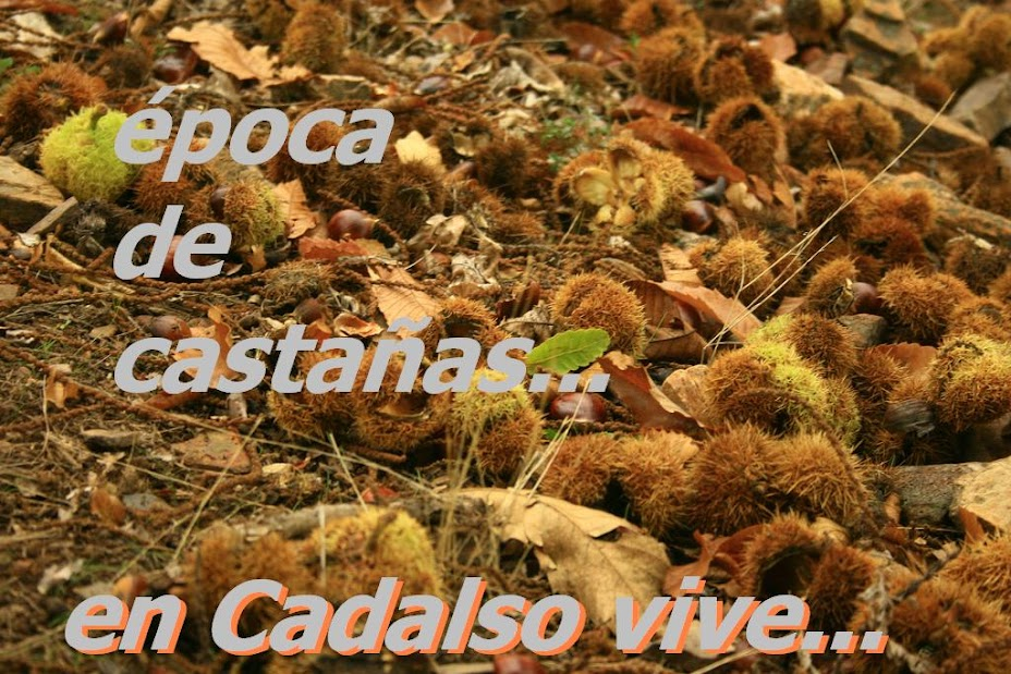 cadalso vive