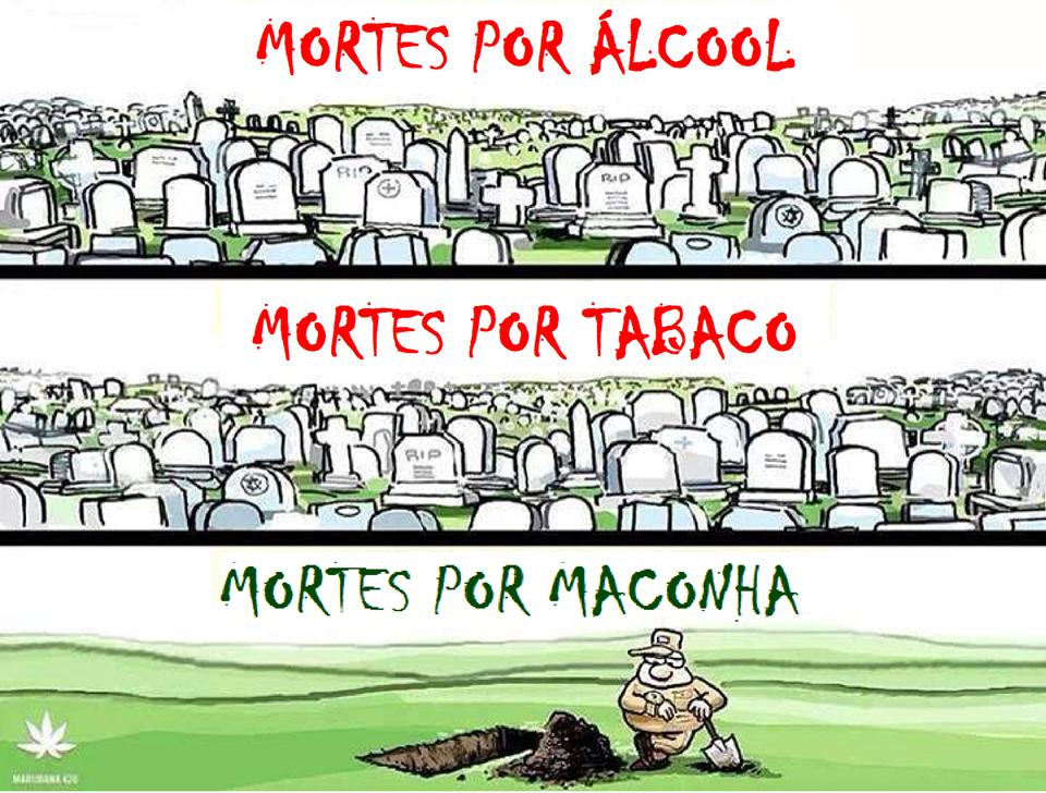 100 anos de proibição da maconha. #legalizabrasil #bastadeguerra #maconhalegal