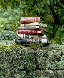 Kirjakirppu -blogi
