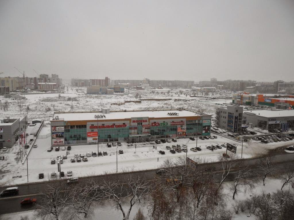 Ноябрь у нас уже почти зима!