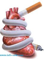 Ciri-Ciri Penyakit Jantung (www.info-asik.com)