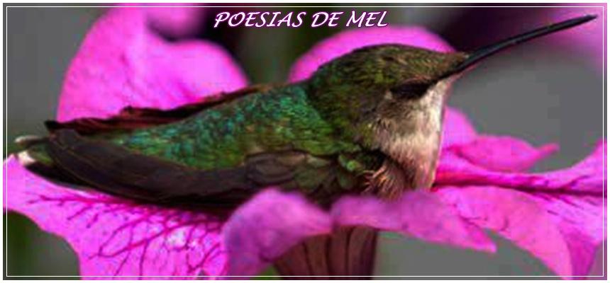 ***POESIAS DE MEL***