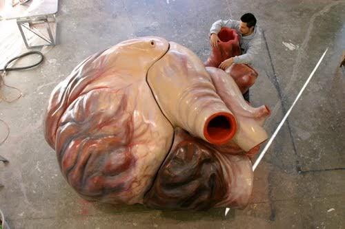 I, Science Girl: El corazón de una ballena azul
