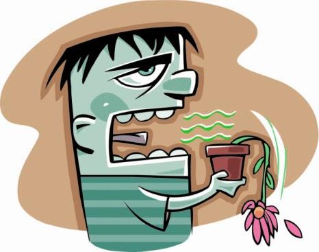 Cara Menghilangkan Bau Mulut Dengan Aman dan Mudah