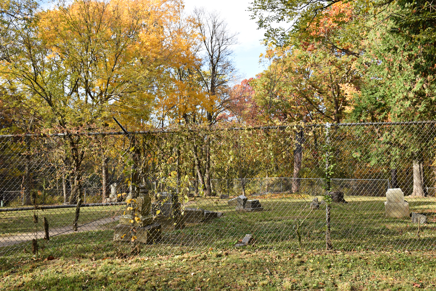 Fall cemetery by Allison Beth Cooling