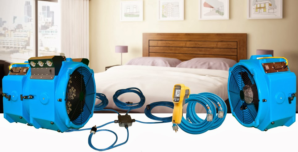 Kill Wasp Nest Home Remedy Bed Bugs Heaters Electric Ant