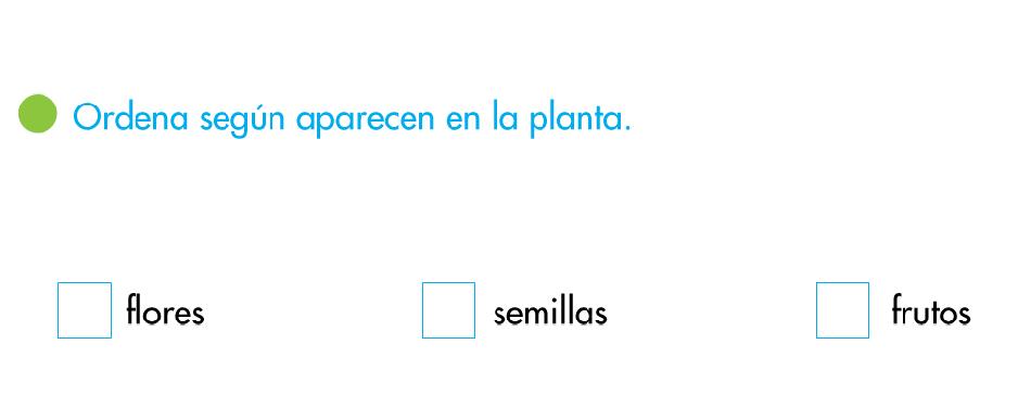 http://www.primerodecarlos.com/SEGUNDO_PRIMARIA/enero/tema1/actividades/CONO/semillas_flores_frutos/visor.swf