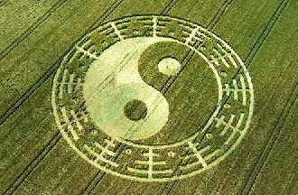 поле инь-ян