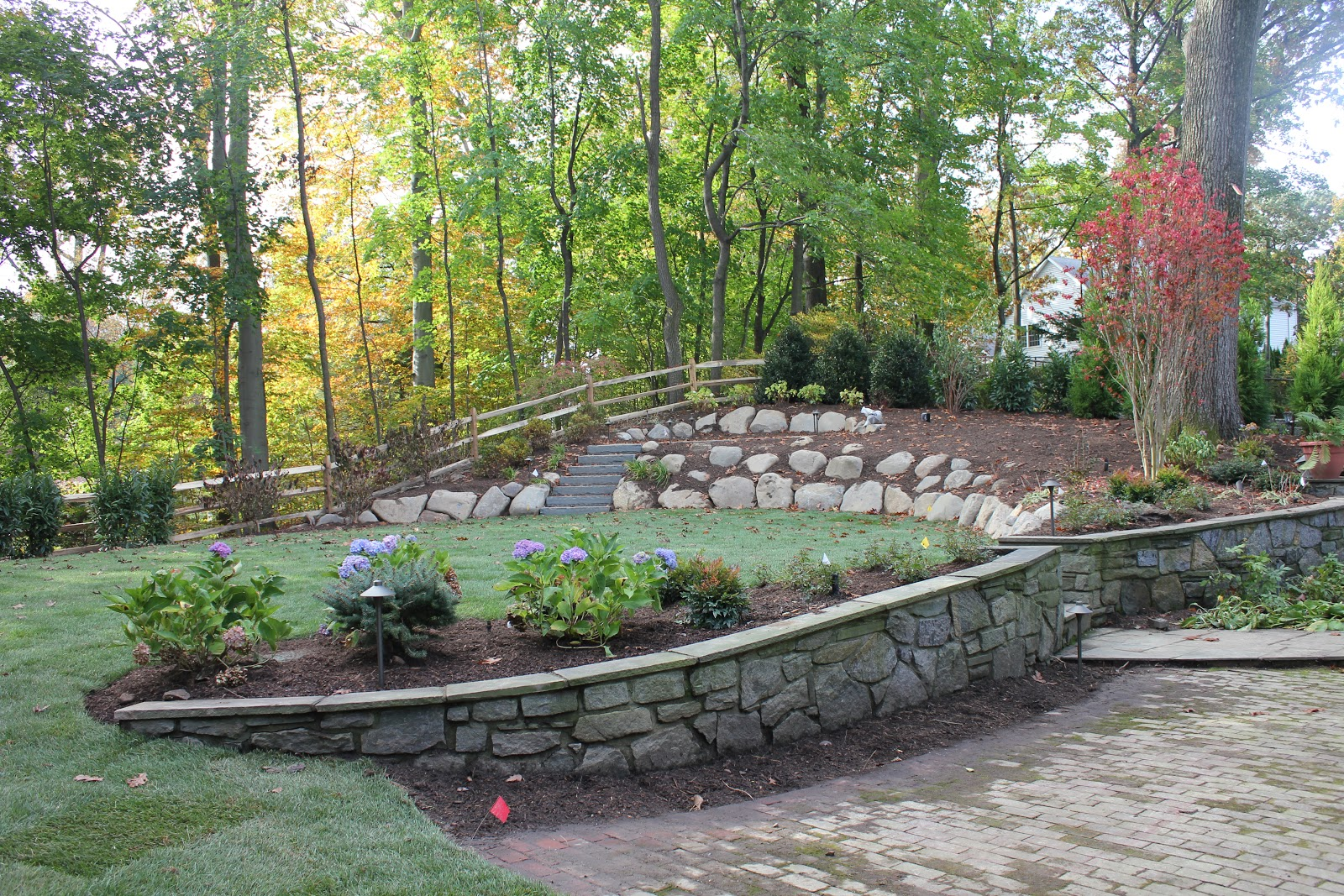 Backyard Renovation Ideas : backyard renovation ideas