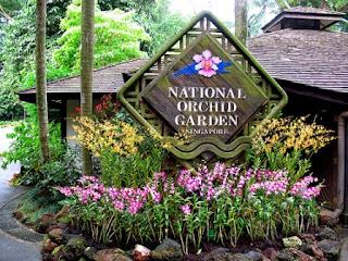 singapore botanical garden, kebun dan taman, tempat wisata di singapore untuk anak