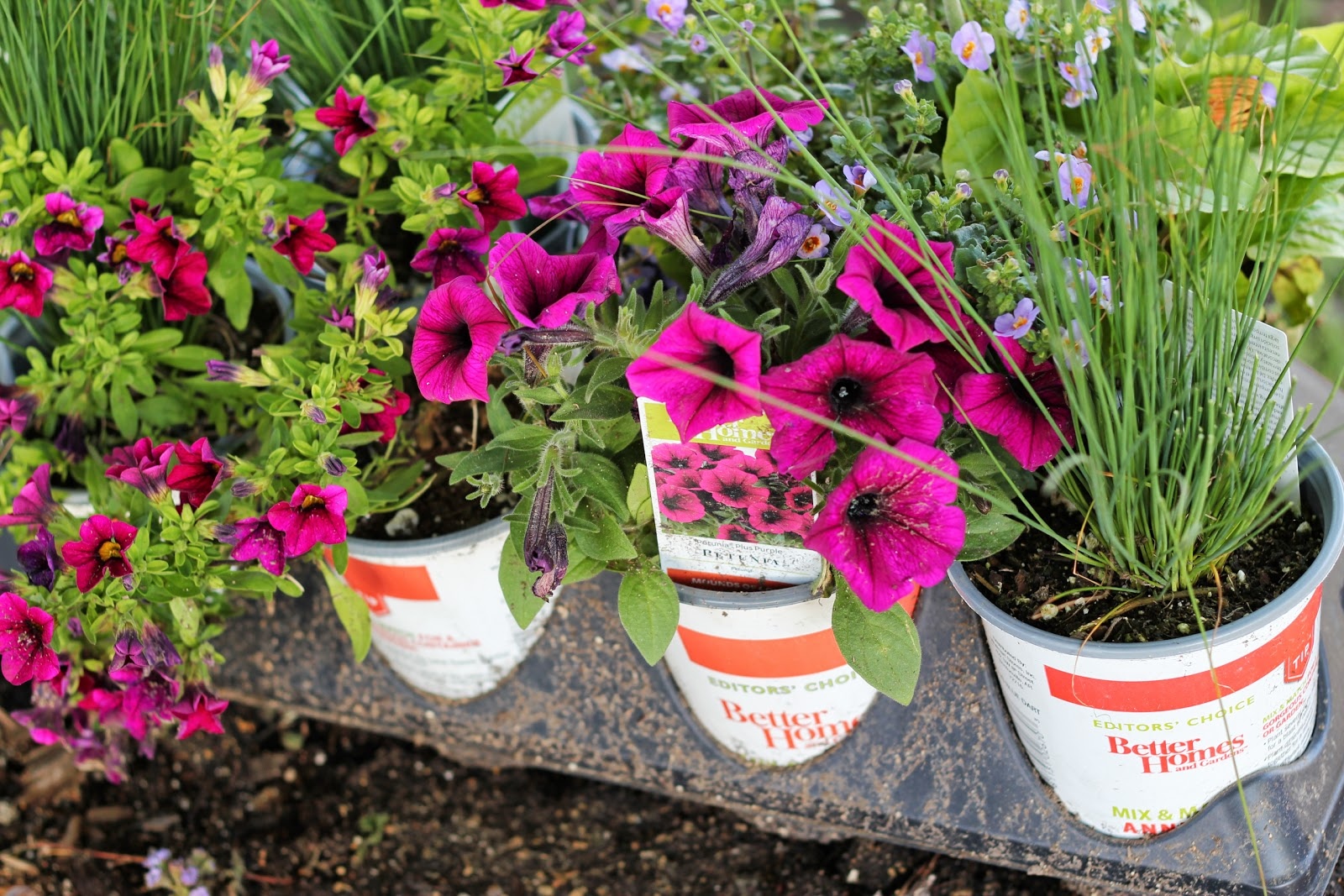 Better Homes And Gardens For A Beautiful Diy Porch Planter