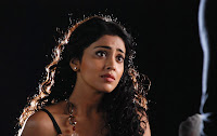 Shriya Saran looks best beautiful for her movies From Aryas Love To Love