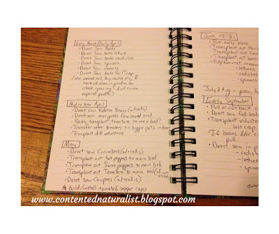 Handwritten journal entry with to-do lists for March, April, May and June.
