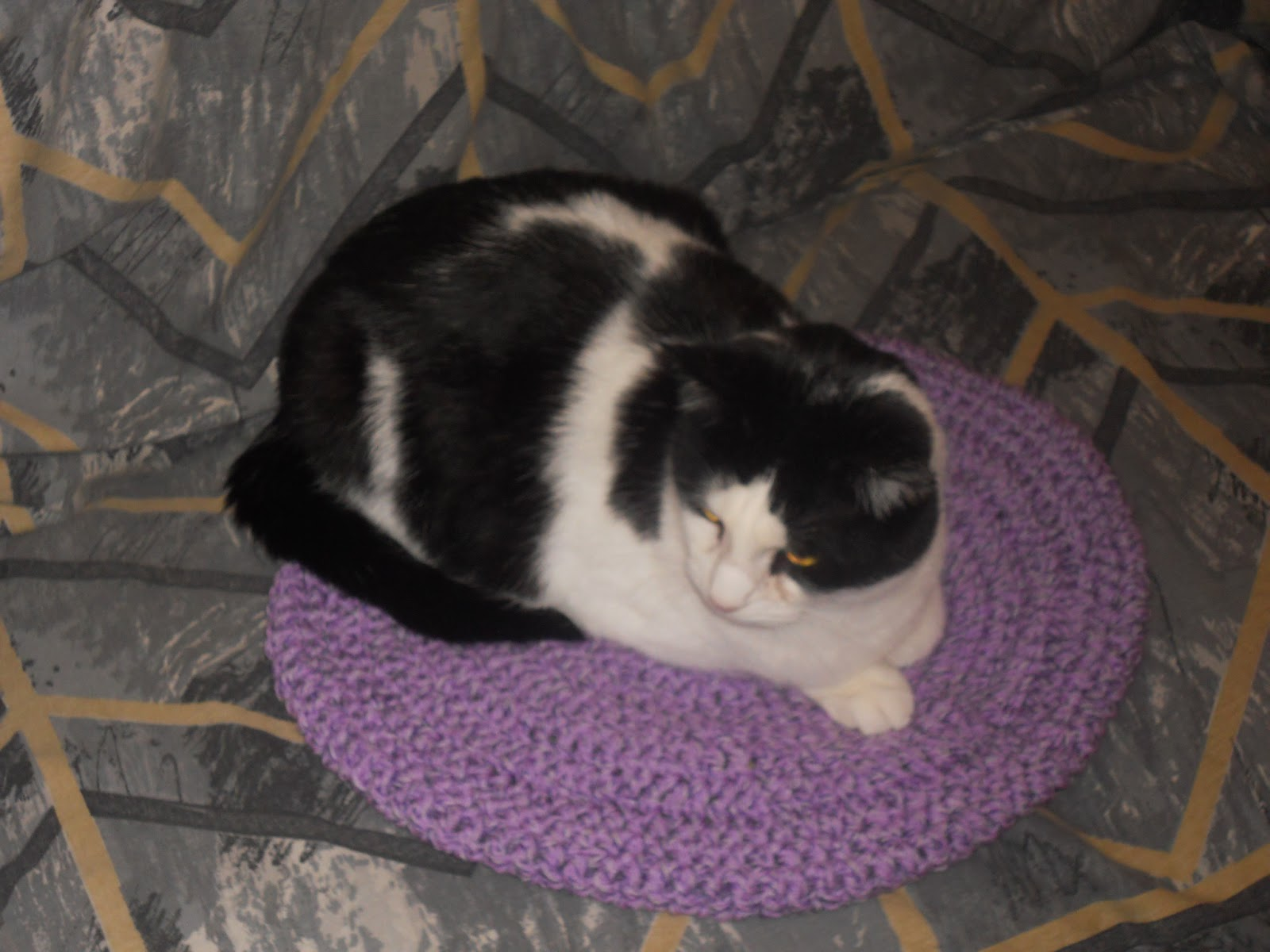 Round crocheted cat blancket