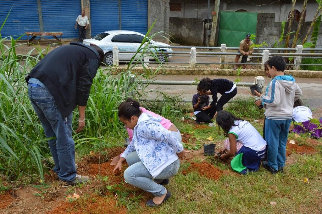 Plantio de mudas de árvores é uma das atividades da ação ambiental realizada nos bairros