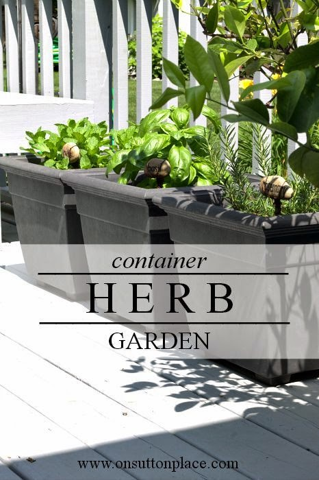 Best Diy Projects Ideas For Planting A Container Herb