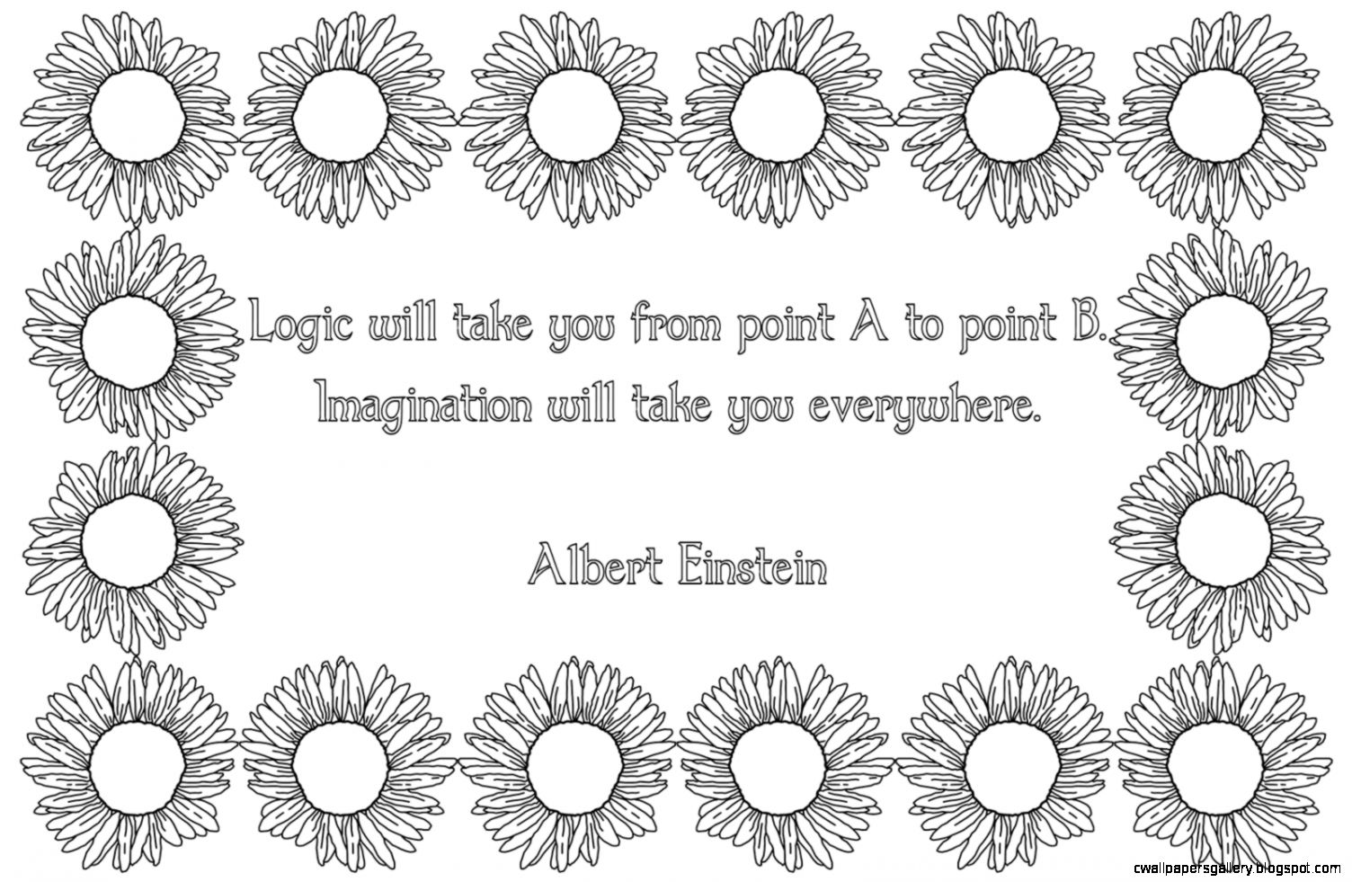 Nightblooming Cards Einstein Quote with Black  White Sunflower