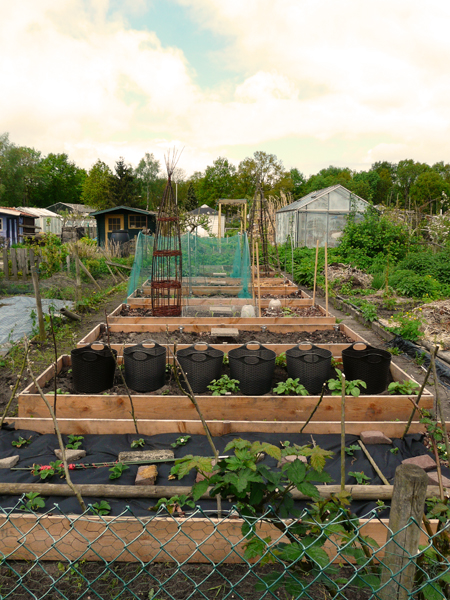 huis tuin en keuken  C  Moestuin deel 6  Het maken van de bedden