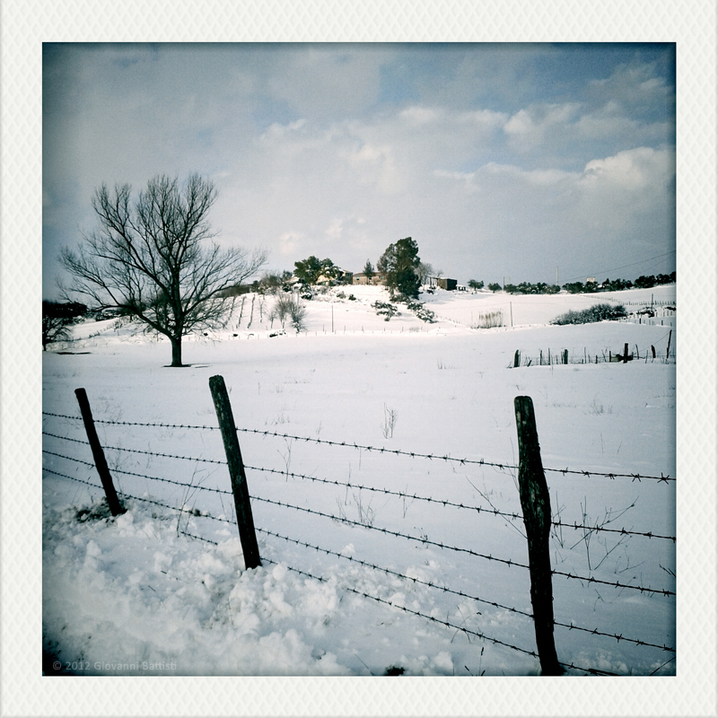 A fence and snow