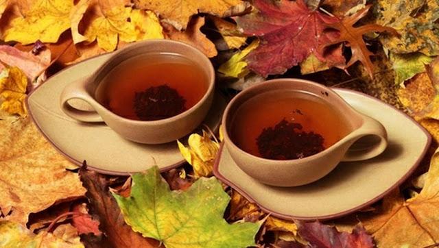 teh [DuniaQ Duniamu]