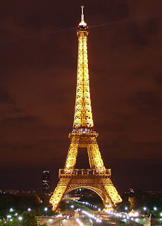 Giraffe  Eiffel Tower Picture on Eiffel Tower Tourism In The Word