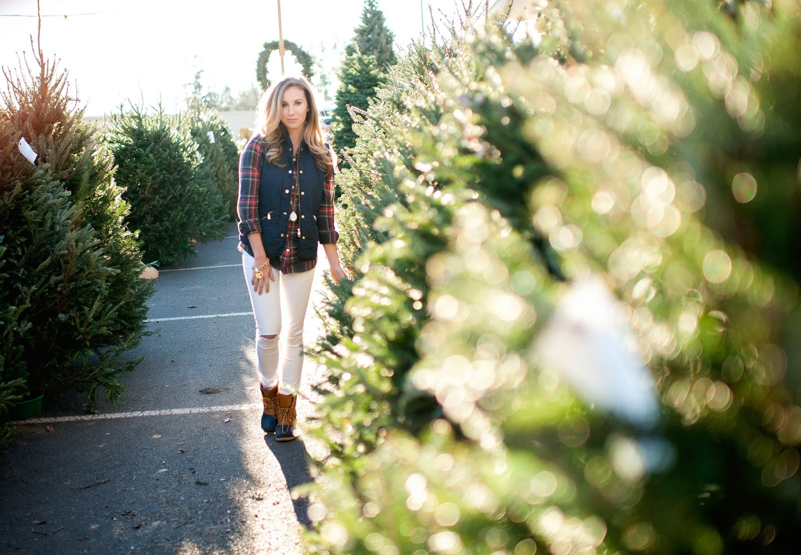 christmas-tree-shopping-in-raleigh-durham-nc