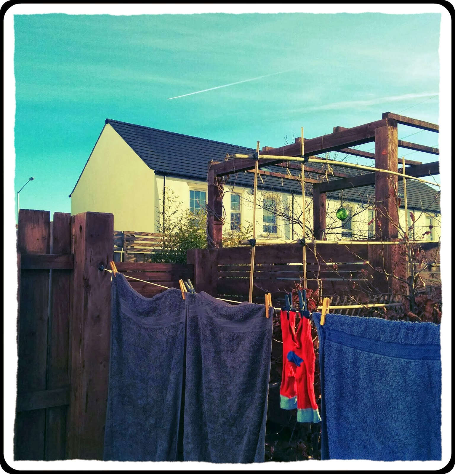 sunny back garden - 'growourown.blogspot.com' - Allotment Blog