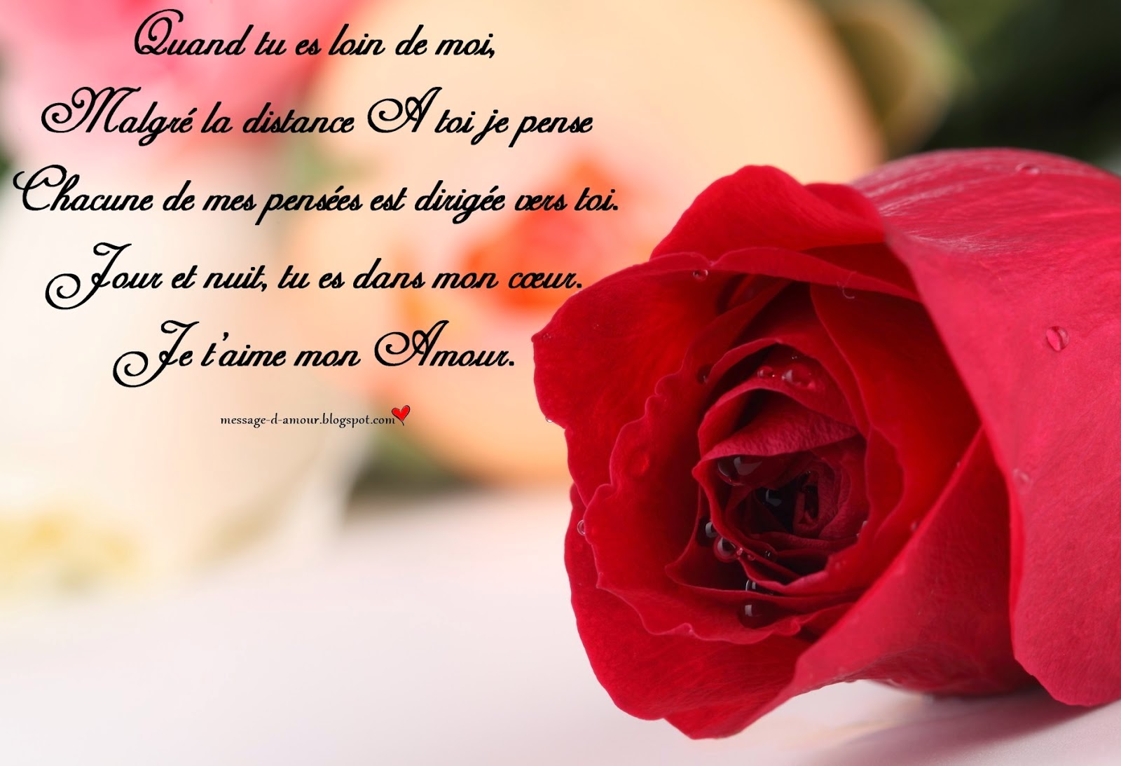 Phrase d'amour sms