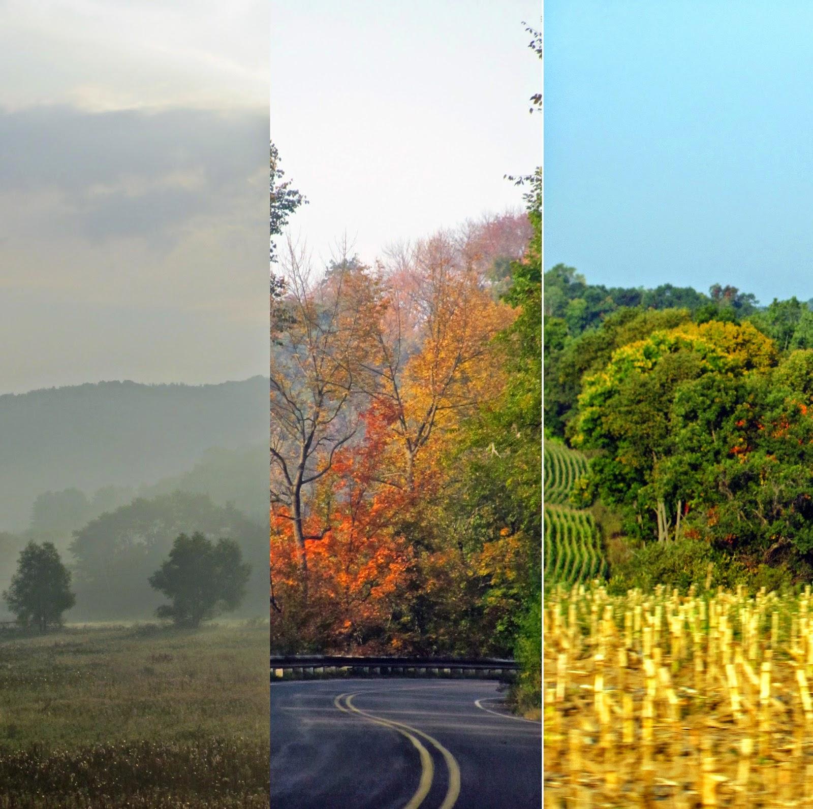 http://ichoosejoy2day.blogspot.com/2014/09/fall-traditions.html#more