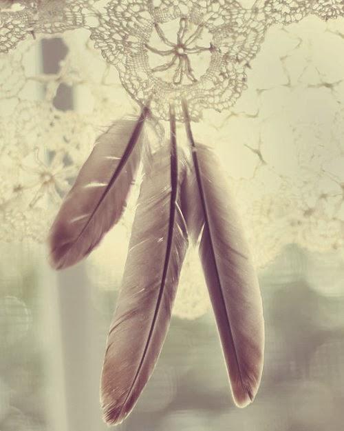 kuş tüyü dantel