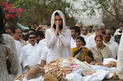 Akkineni Nageswara Rao Cremation Photos Gallery-thumbnail-4