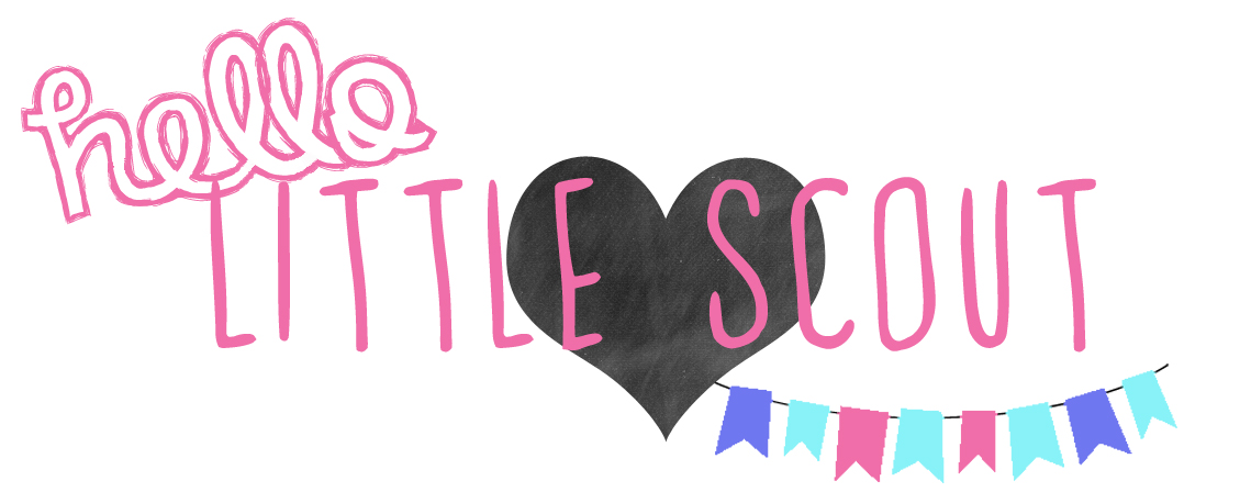 The Sefcik Blog || Hello Little Scout