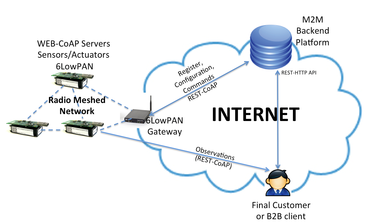 internet and web services Internet strategy and web services the internet strategy and web services team provides strategy, leadership and support for the growth of hopkinsmedicineorg.