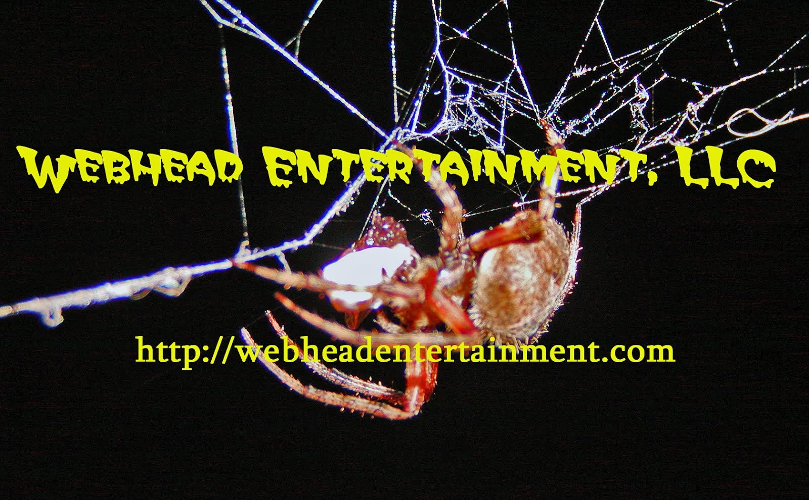 Webhead Entertainment LLC