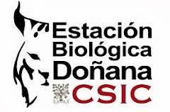 Estación Biológica de Doñana