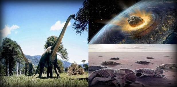 Pengertian dan Contoh Seleksi Alam pada Makhluk Hidup
