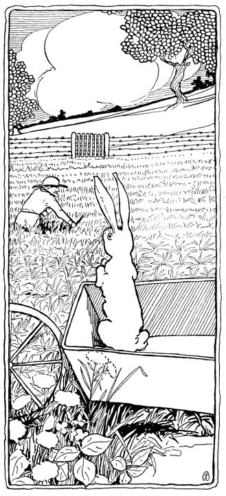 El cuento de Pedrito el conejo travieso de Beatrix Potter. | RZ100 ...