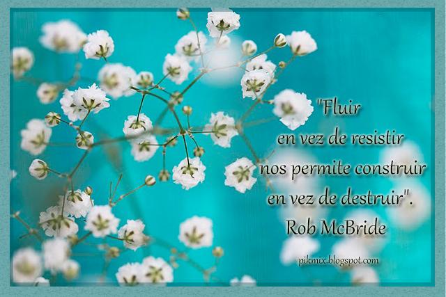 Fluir en vez de resistir • Imagen con Frase • Flores blancas