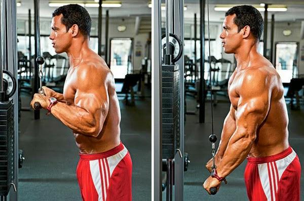 Prostowanie ramion z linką wyciągu górnego