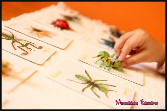 Lenguaje Montessori - Emparejando objetos con sus dibujos | Creciendo