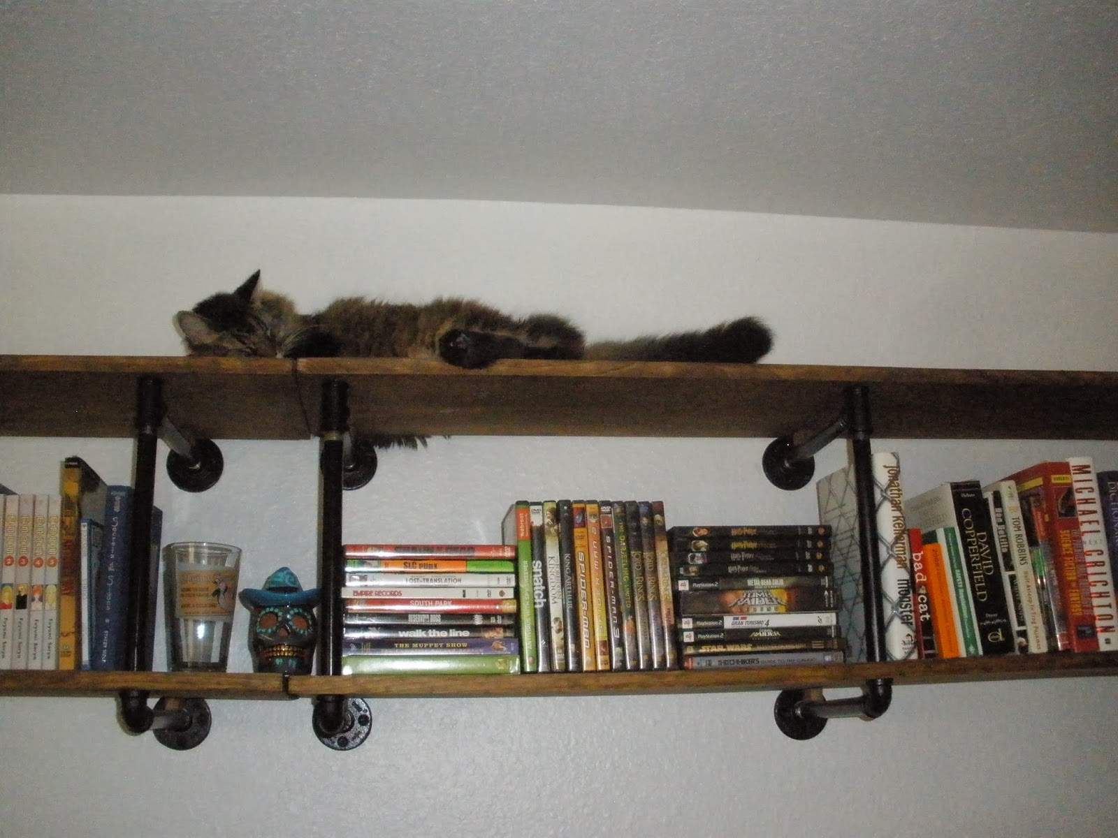 Caliradan the bookshelf that doubles as a cat tower for Bookshelf cat tower