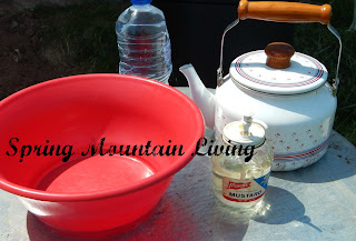 washing dishes with limiteed water