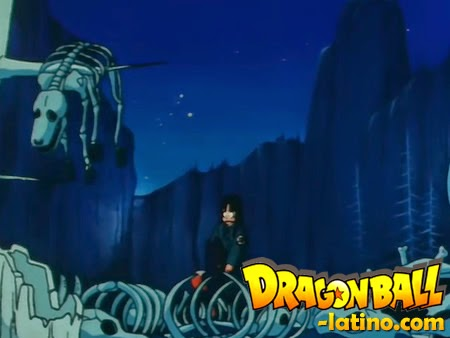 Dragon Ball capitulo 2