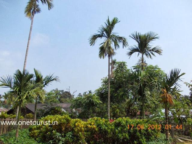 asia`s Cleanest village , mawlynnong,meghalaya,
